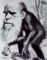 Darwin with an ape body.