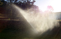 Water sprinkler.