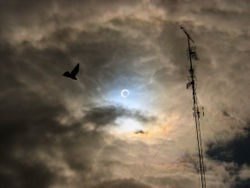 annular eclipse.