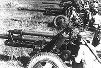 Soviet 76.2 mm field guns.