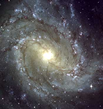 Most large Galaxies have the familiar spiral shaped disc.