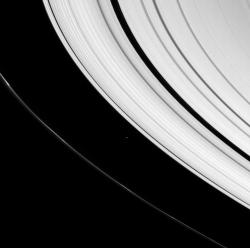 A small icy world plies between Saturn's rings. Credit: NASA/JPL/Space Science Institute.