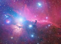 Orion Deep field (detail of Horsehead and Flame Nebulae).