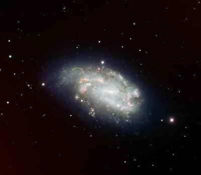 Supernova 2005dh and NGC 1559.