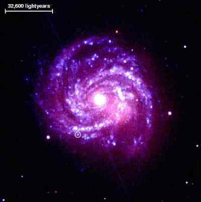 supernova in spiral Galaxy M100.