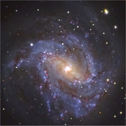 Astrophoto: M83 by Michael Sidonio.